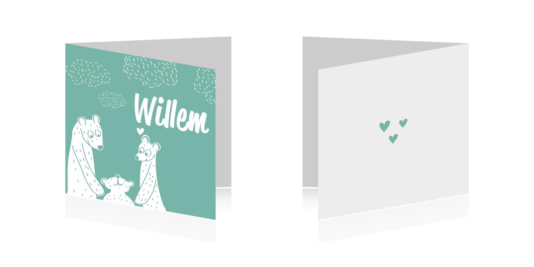 Birth announcement card - mavs design ©